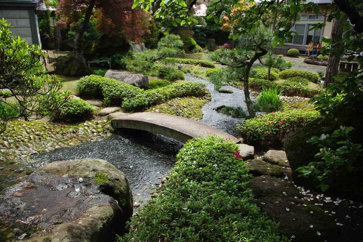 Японский сад на даче видео