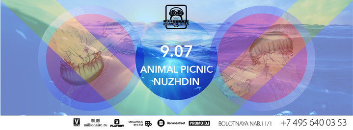 Saturday with Nuzhdin & Animal Picnic в Артель Бессонница