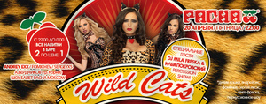 �Wild Cats� � ����� Pacha Moscow  ����