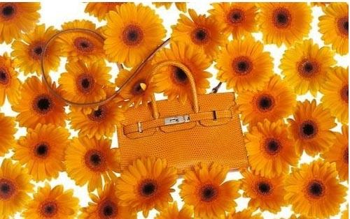 Марка Hermes выпустила коллекцию сумок весна–лето 2012 Фото.