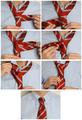 Как завязать галстук на  узел Принц Альберт